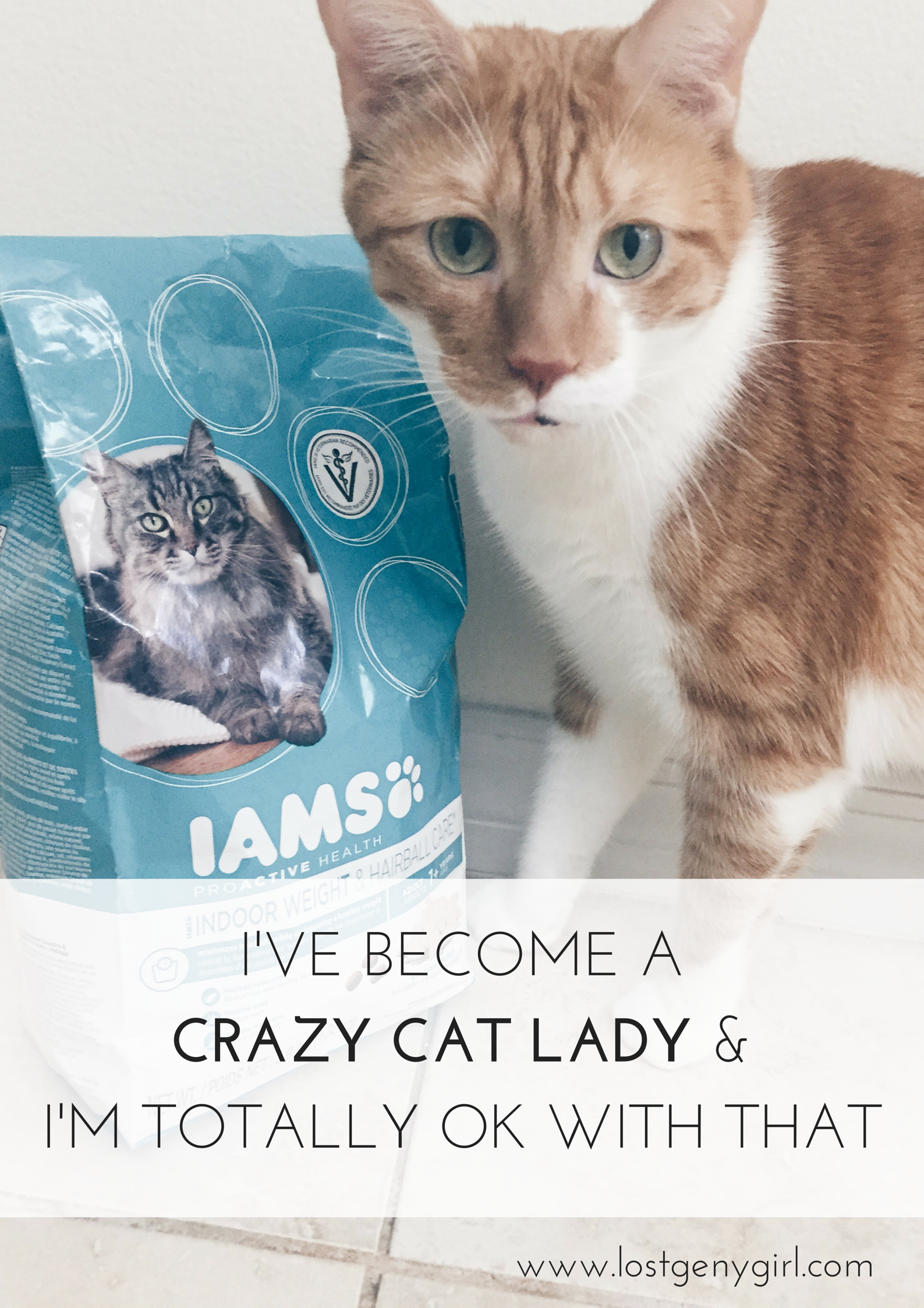 I'VE BECOME A CRAZY Cat Lady And I'm Totally OK With That