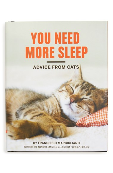 advice from cats