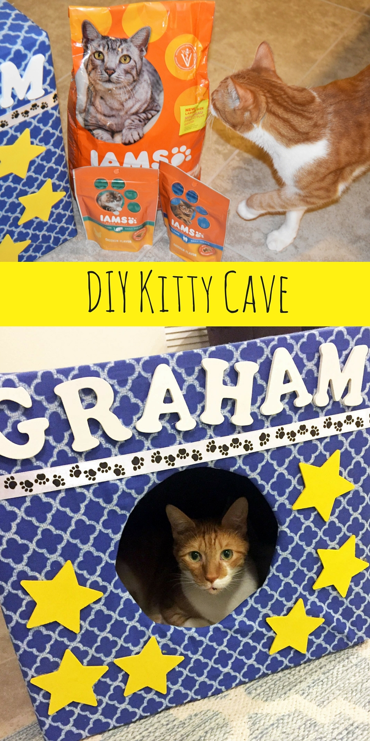DIY Kitty Cave