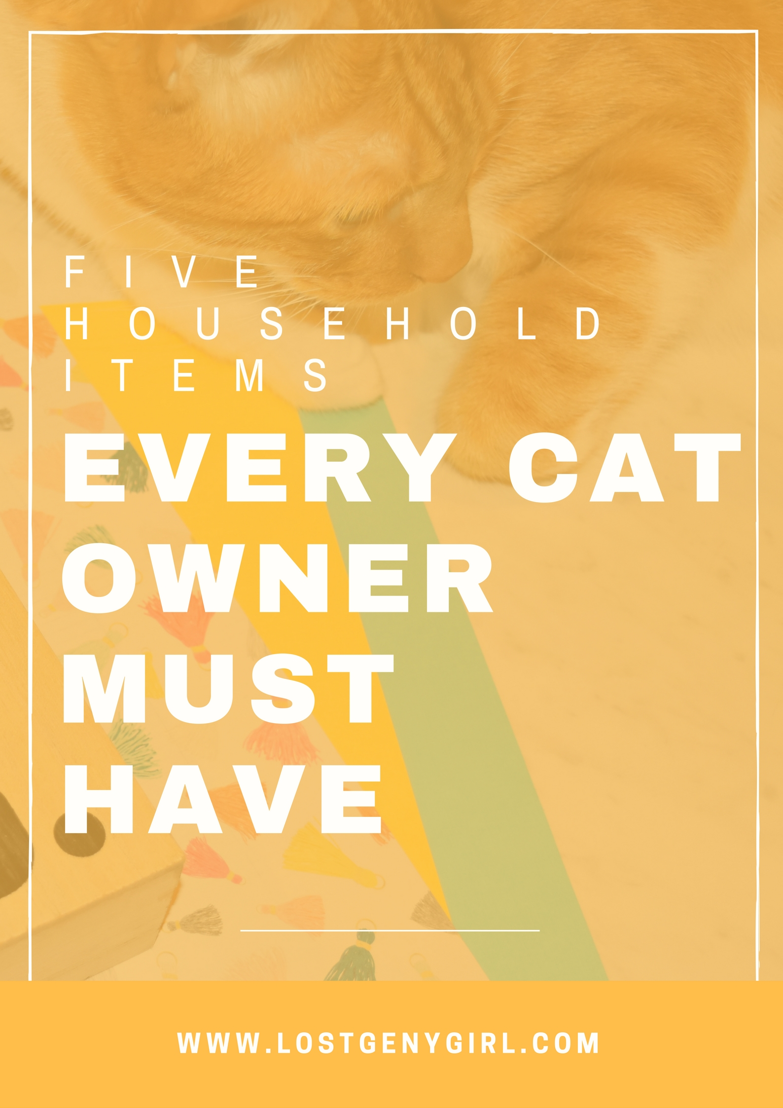 Cat Essentials: 5 Household Items Every Cat Owner Must Have