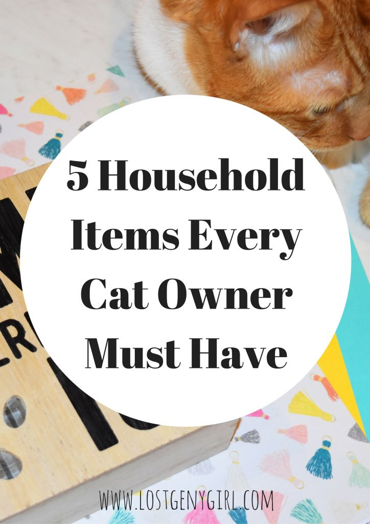items-every-cat-owner-must-have