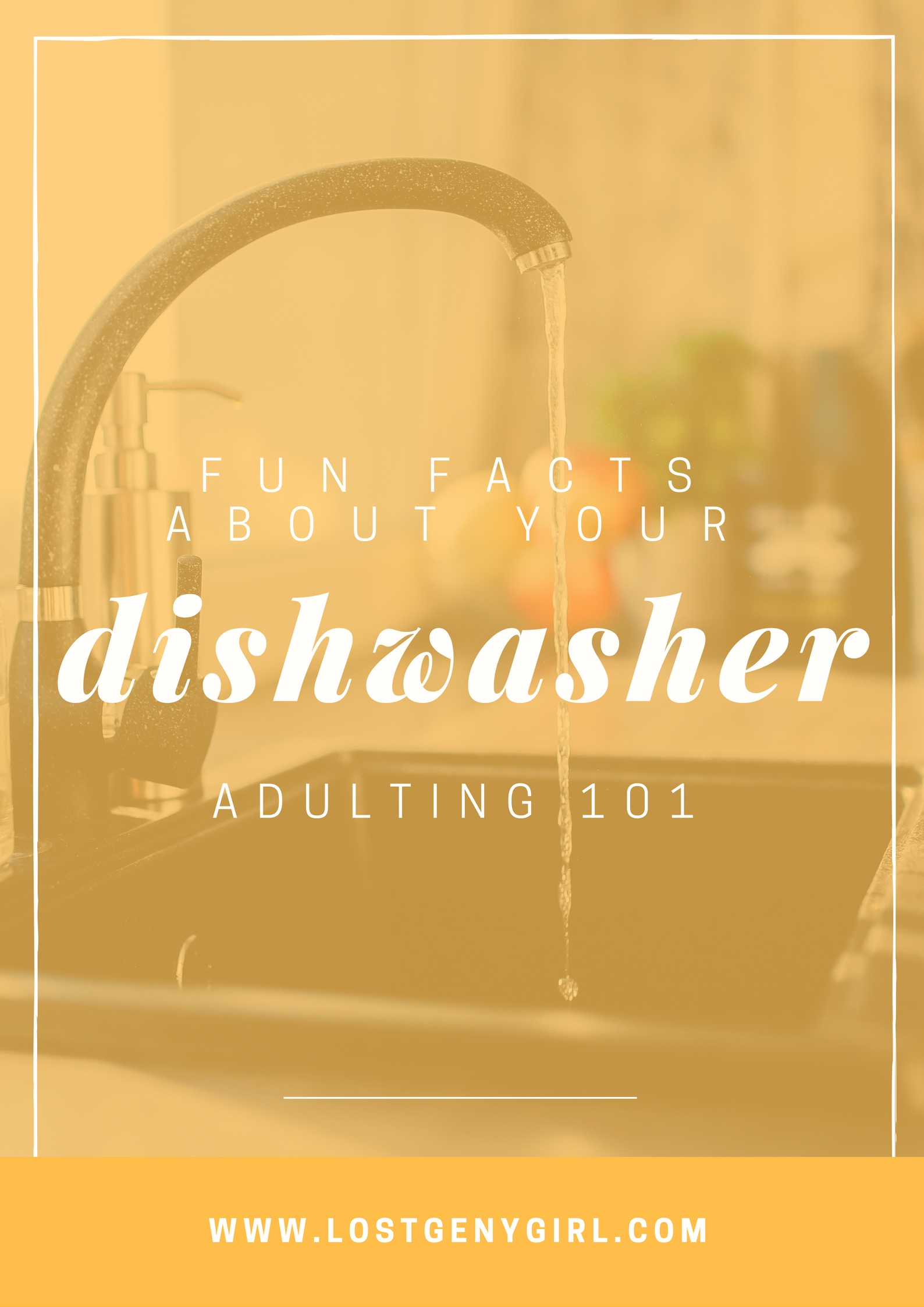 Adulting 101: Fun Facts About Your Dishwasher