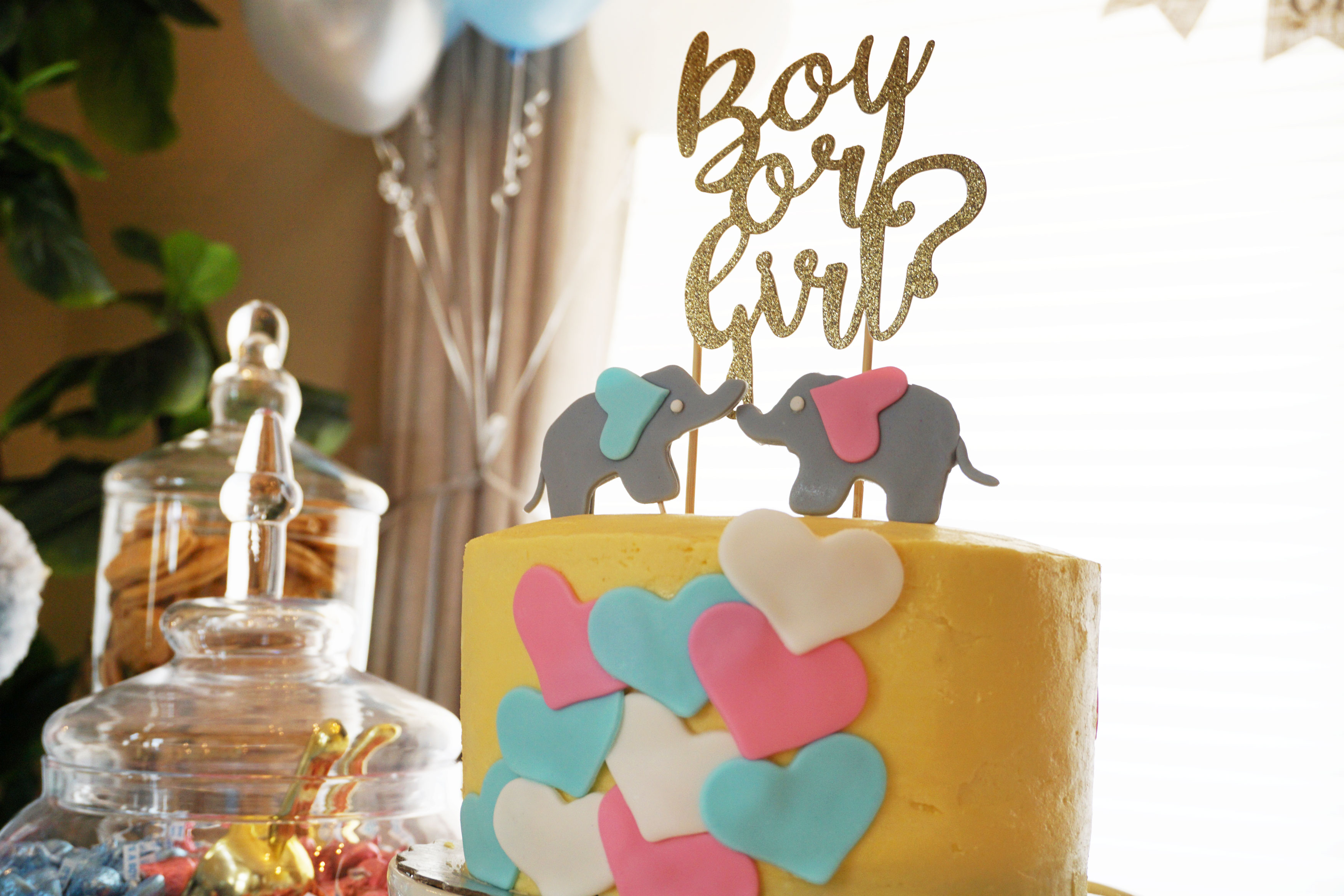 Baby's Gender Reveal Party