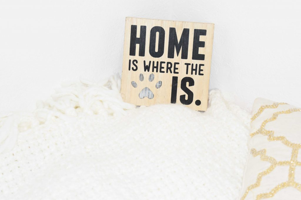 home-is-where-the-cat-is