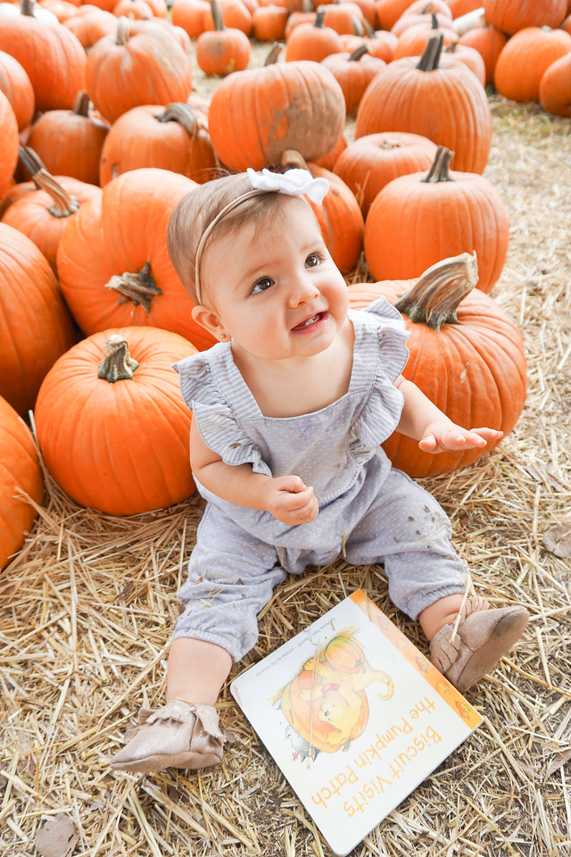 baby pumpkin patch pictures