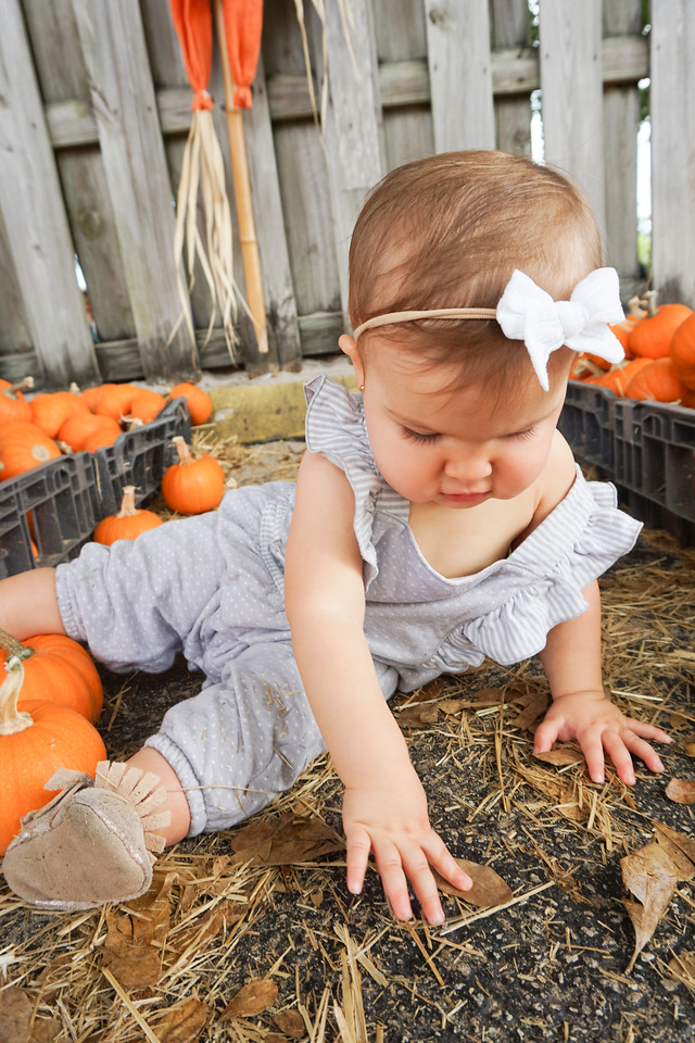 baby's first pumpkin patch - 2