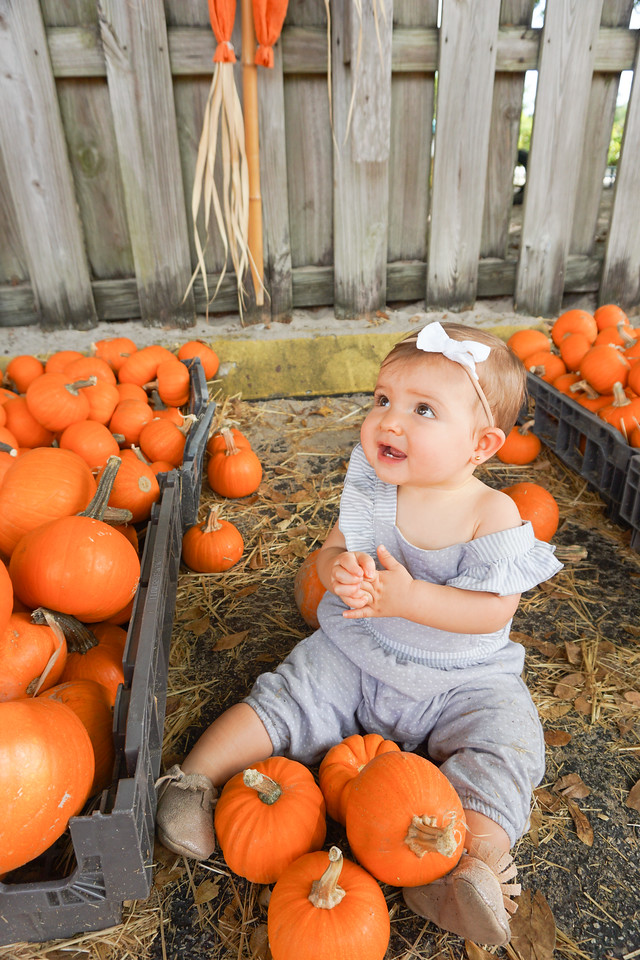 pumpkin patch photo ideas 2